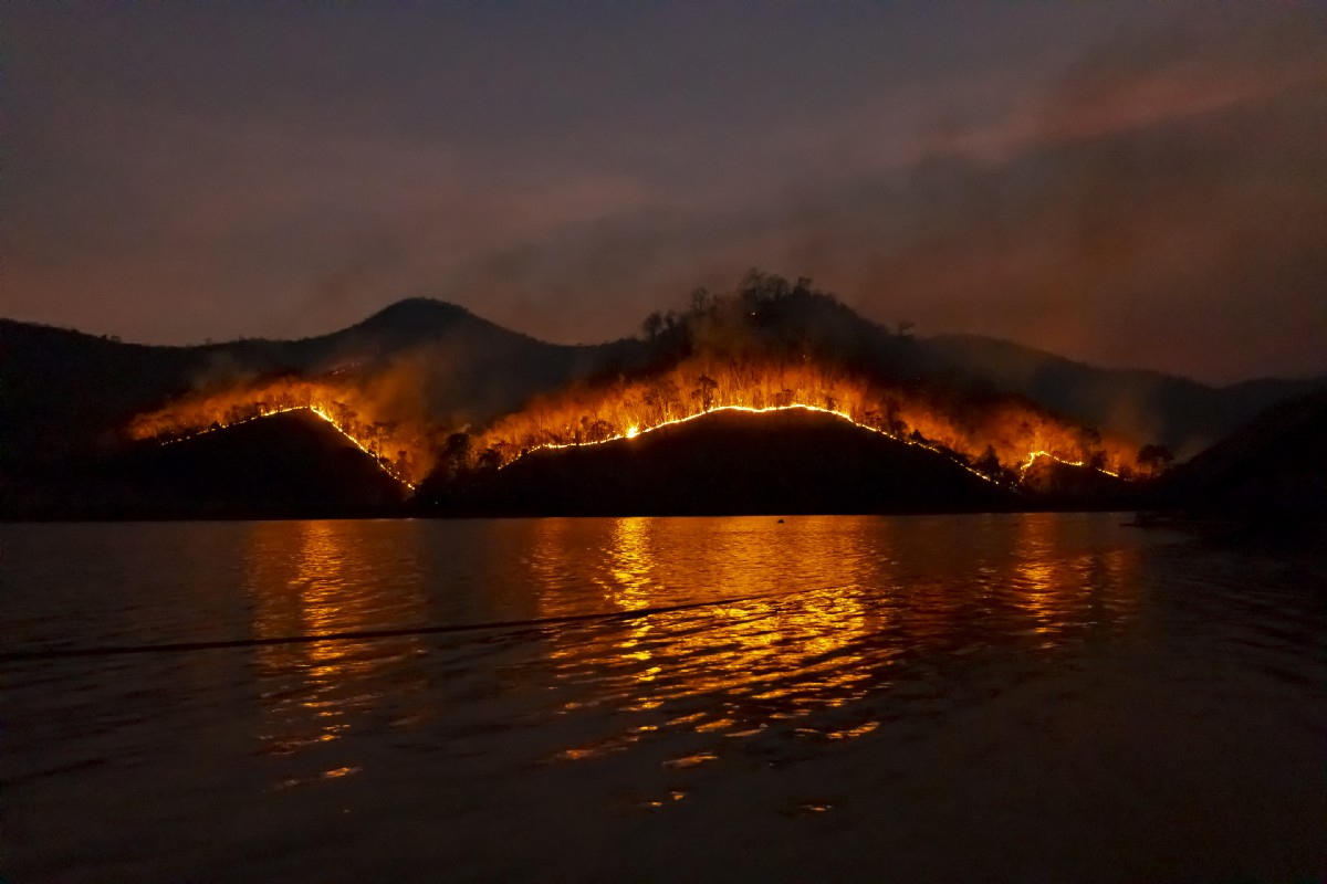 What I Do As Oregon Burns. And the way we cope with the difficulties… |