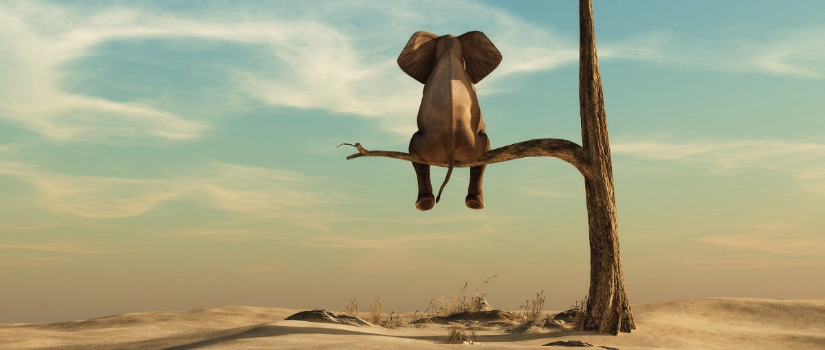 What Happened to Hadoop? What Should You Do Now?