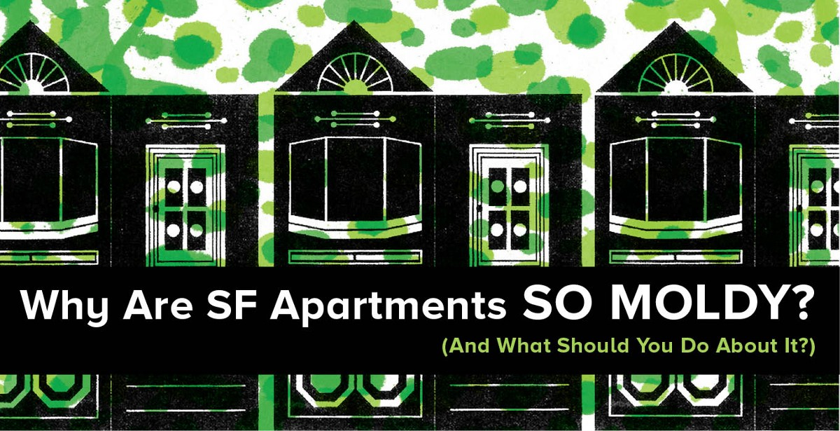 Why Are SF Apartments So Moldy? (And What Should You Do About It?)