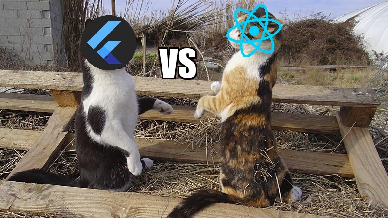 Flutter Vs React Native — Do we have a Winner ???