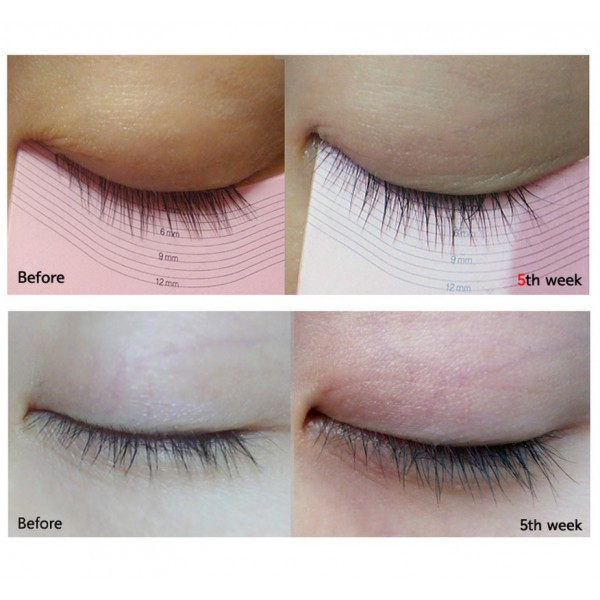 01233dd6fd1 My Lash By Etude House Does It Work? - Top Beauty Guide - Medium