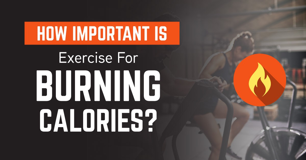 How Important is Exercise for Burning Calories? | by Andres Vargas | Avatar  Nutrition | Medium