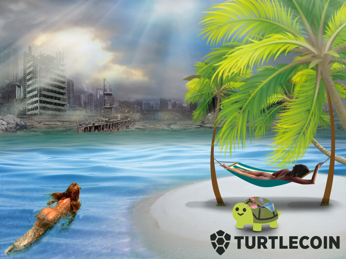 This Week In TurtleCoin (July 29, 2020)
