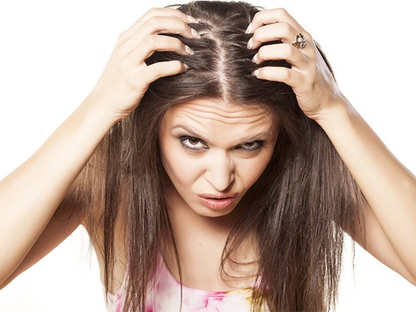 What is the Difference Between Lice & Dandruff?