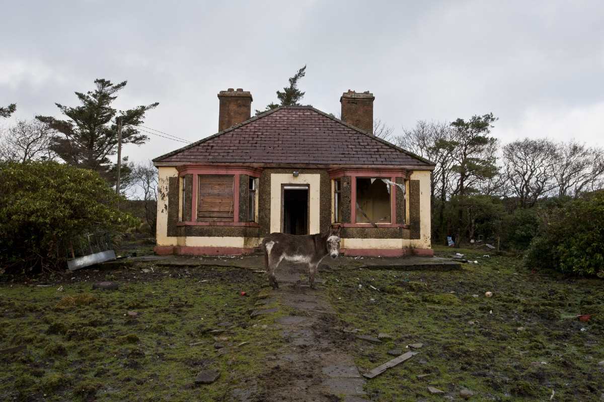 So You're Looking For A Fixer-Upper?