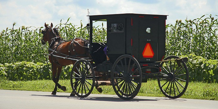 How Amish People Live A Sustainable Life - Thrive Global