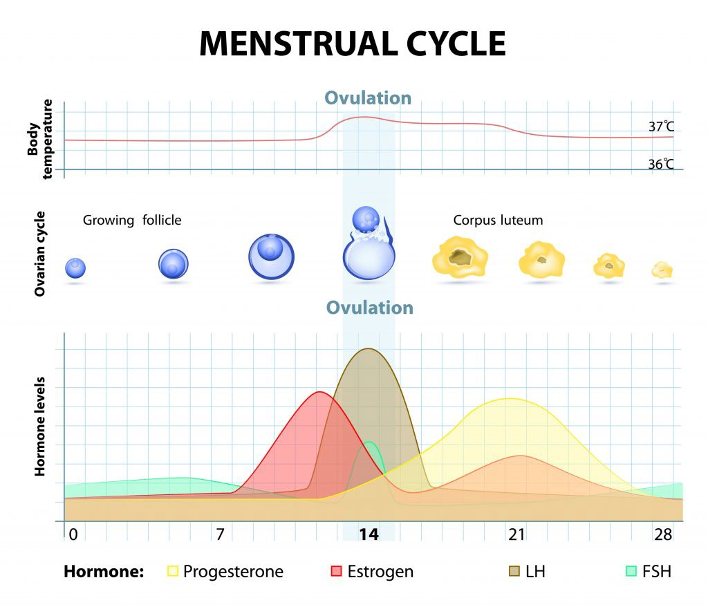 PMS — How to get your mood under control and have a good period