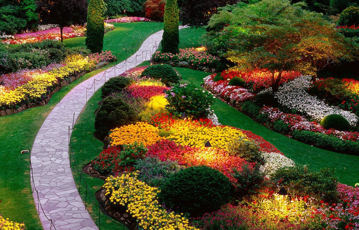 10 Garden Design Ideas. If you are a plant lover you surely  by