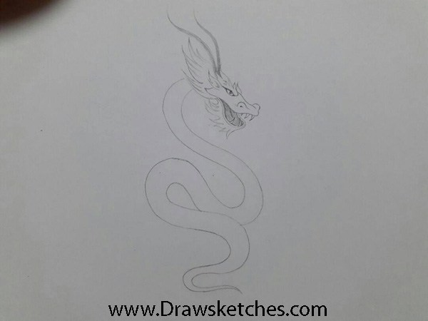 How To Draw A Chinese Dragon Introduction A Unique Symbol Of By Amanda Palmer Medium