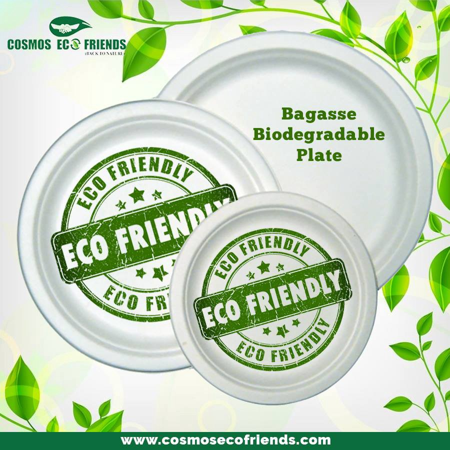 Use More Eco-Friendly Products And Lower Down The Use of Plastic to