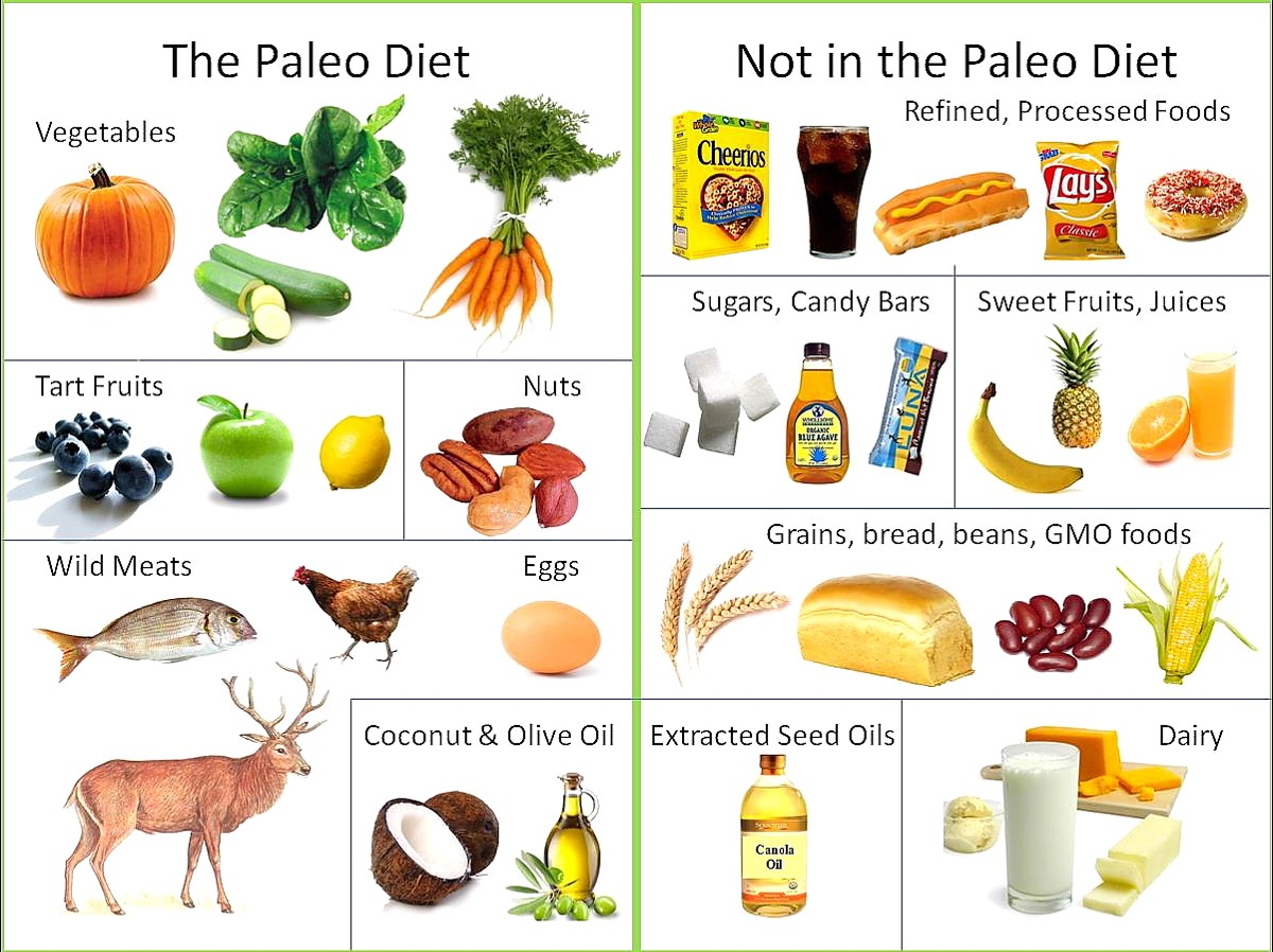 The Lazy People Way To Paleo Diet By Cocomagicc Medium