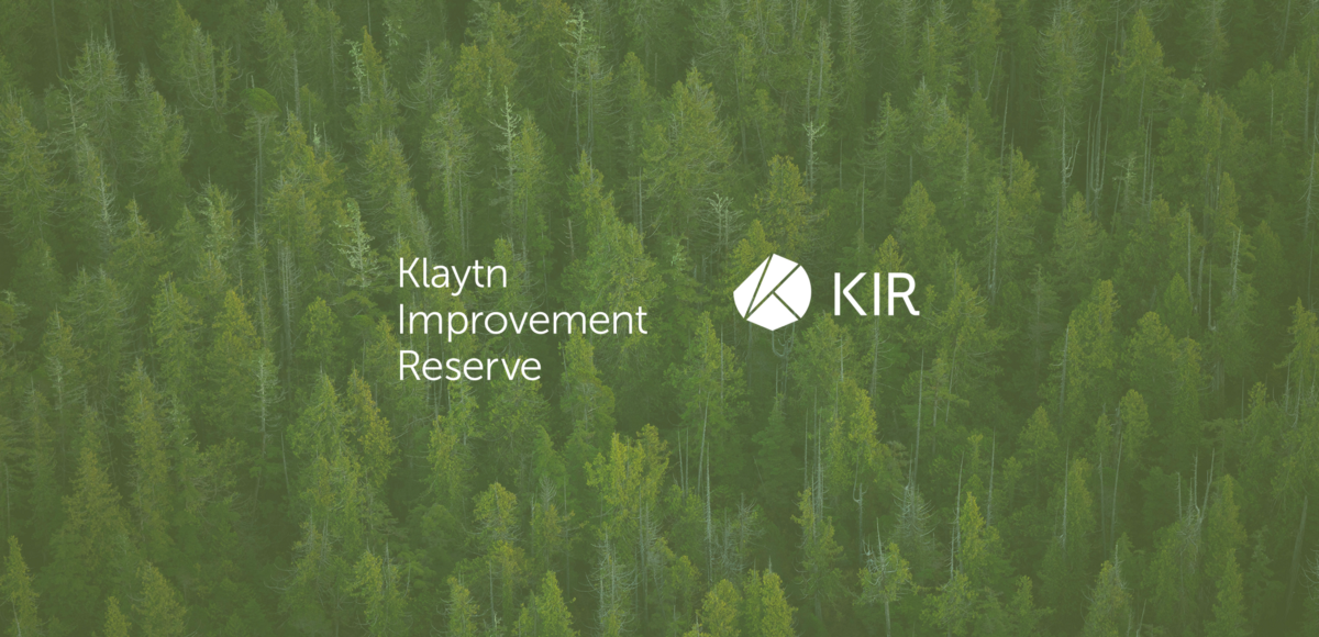 7 Months of the Klaytn Improvement Reserve (KIR): Achievements, Challenges, and What is Next