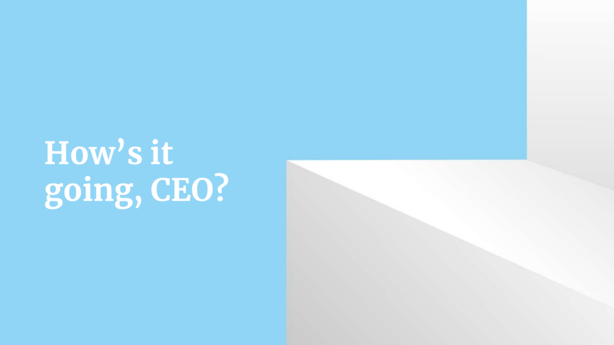 Image for blog: How's it going, CEO?