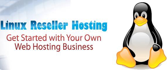 WHAT IS LINUX RESELLER HOSTING?. Linux reseller hosting service is one… |  by Mohit Gupta | Medium