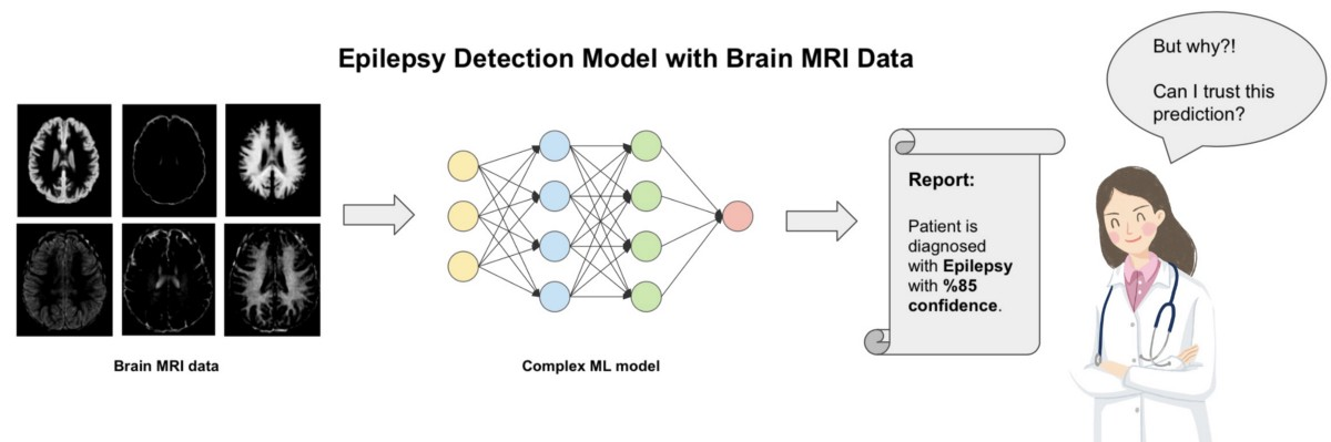 How Explainable Artificial Intelligence (XAI) Can Help Us Trust AI