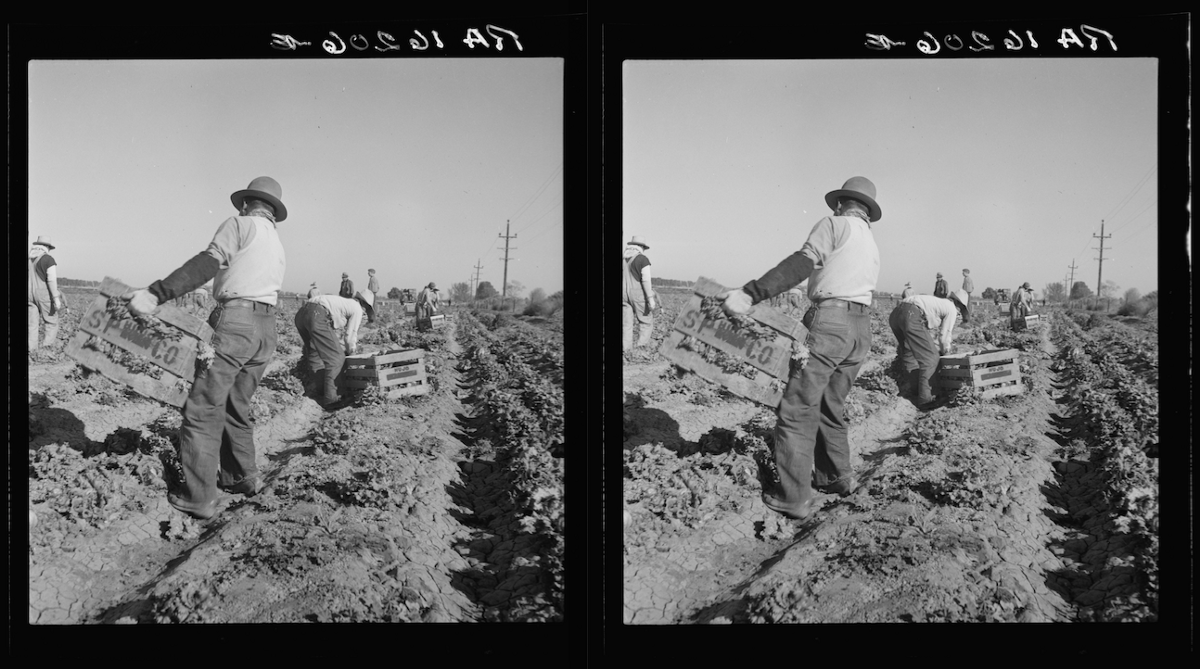 America's forgotten Filipino farmworkers: If you know Cesar Chavez, you should know Larry Itliong