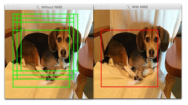 YOLO Object Detection with OpenCV and Python - Towards Data