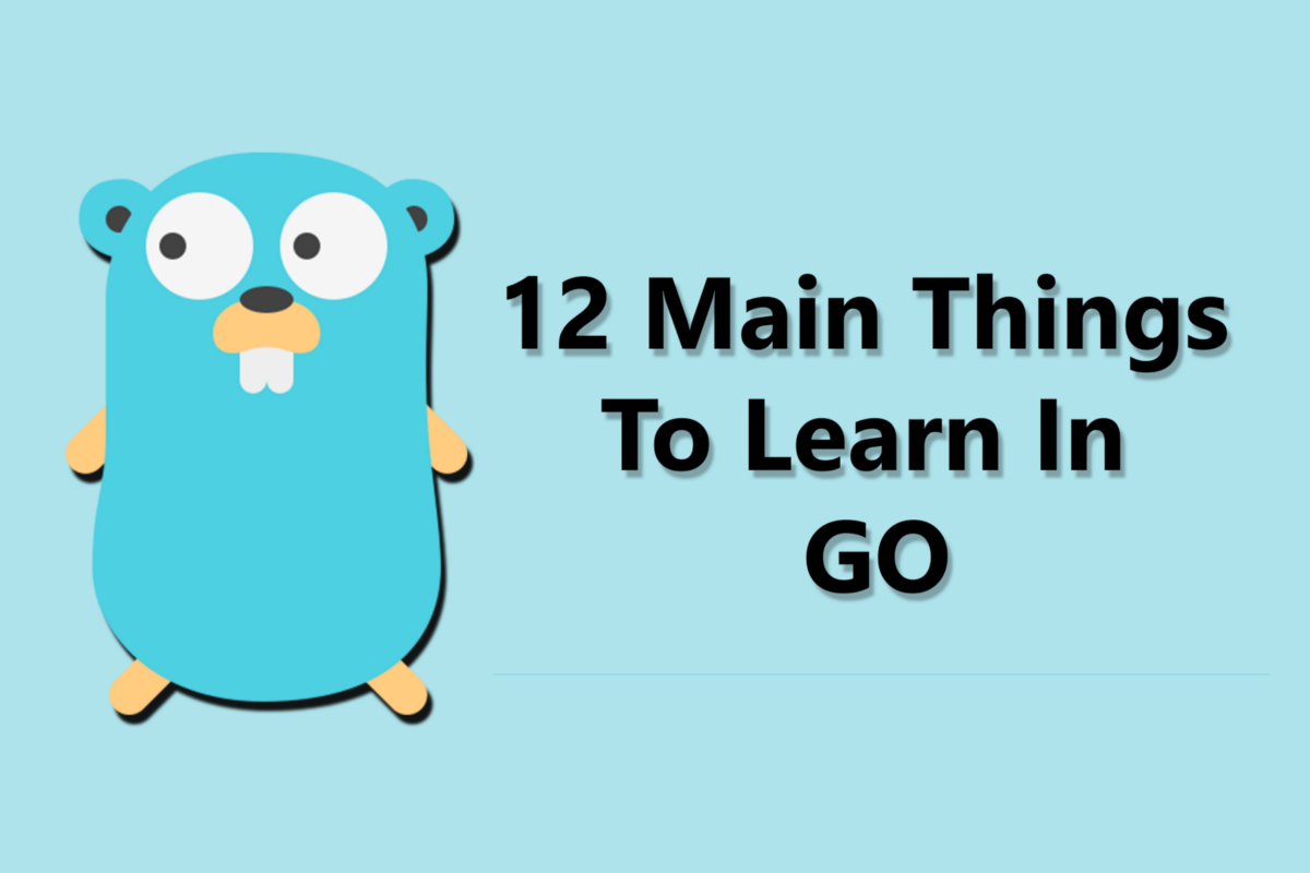 12 Main Things To Learn In GO