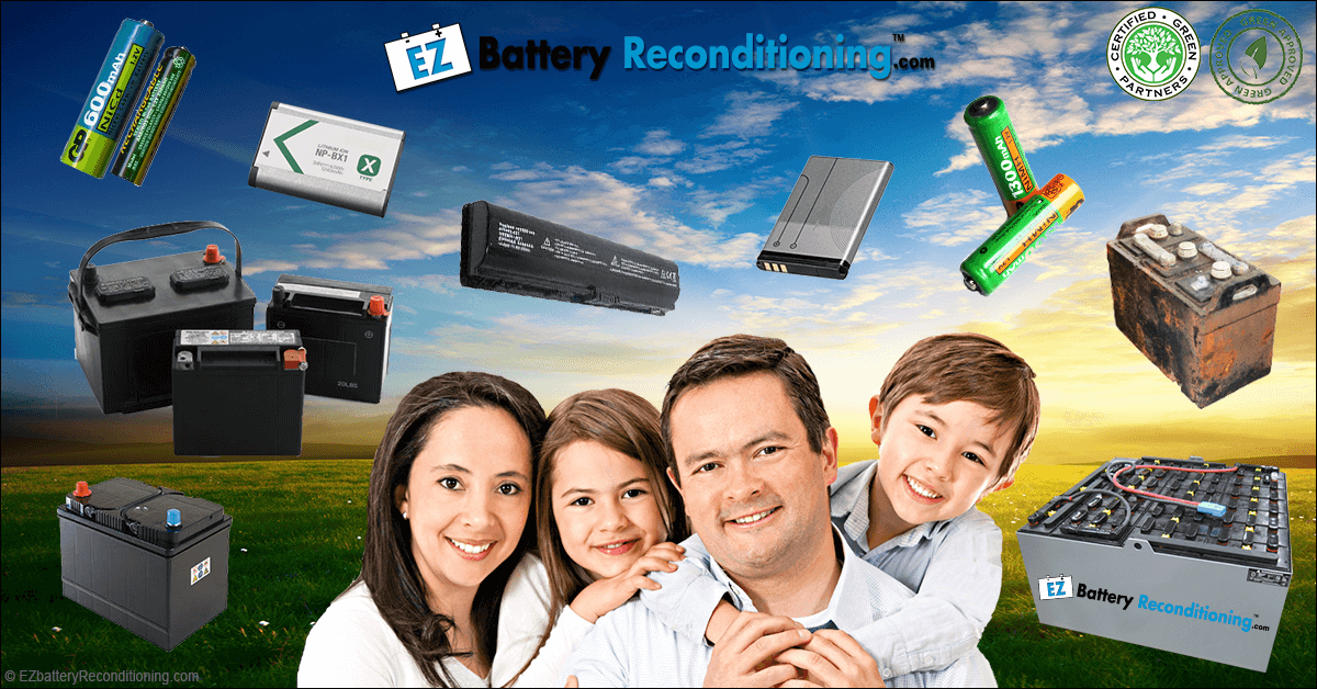 Need Ez Battery Reconditioning Advice?