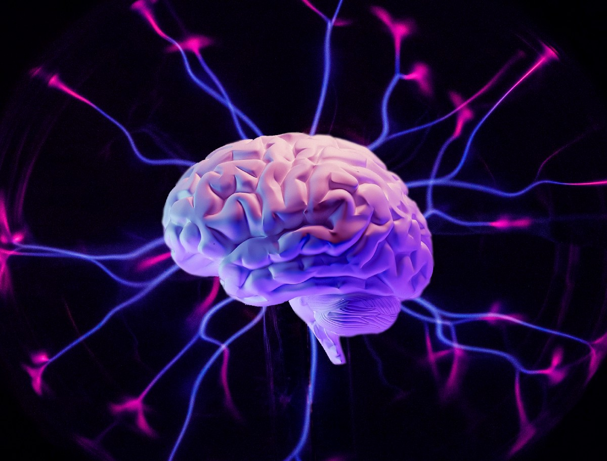 5 Ways Psychedelics May Affect the Brain