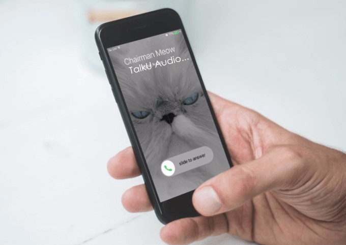 What VOIP mobile app for calling in the U S  can receive