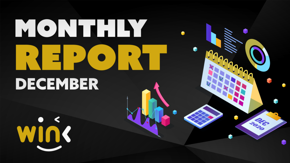 WINK MONTHLY REPORT FOR DECEMBER