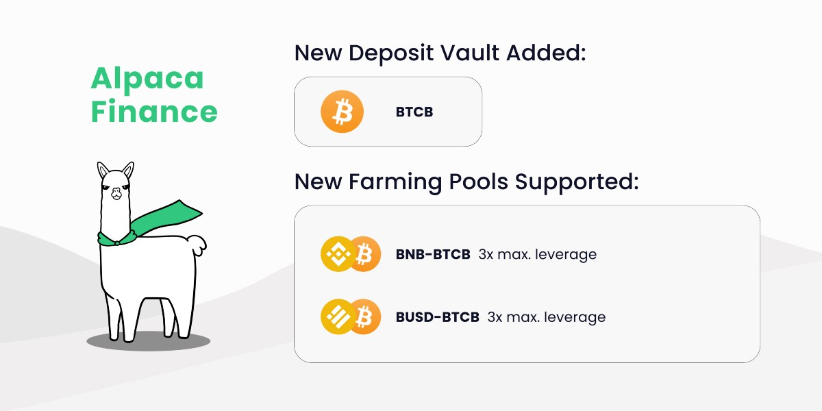 New BTCB Deposit Vault and Double-Sided Leveraged Farming Pools!