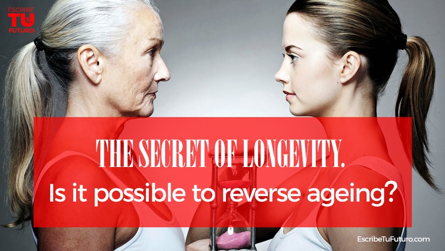 The Secret of Longevity  Is It Possible to Reverse Ageing?