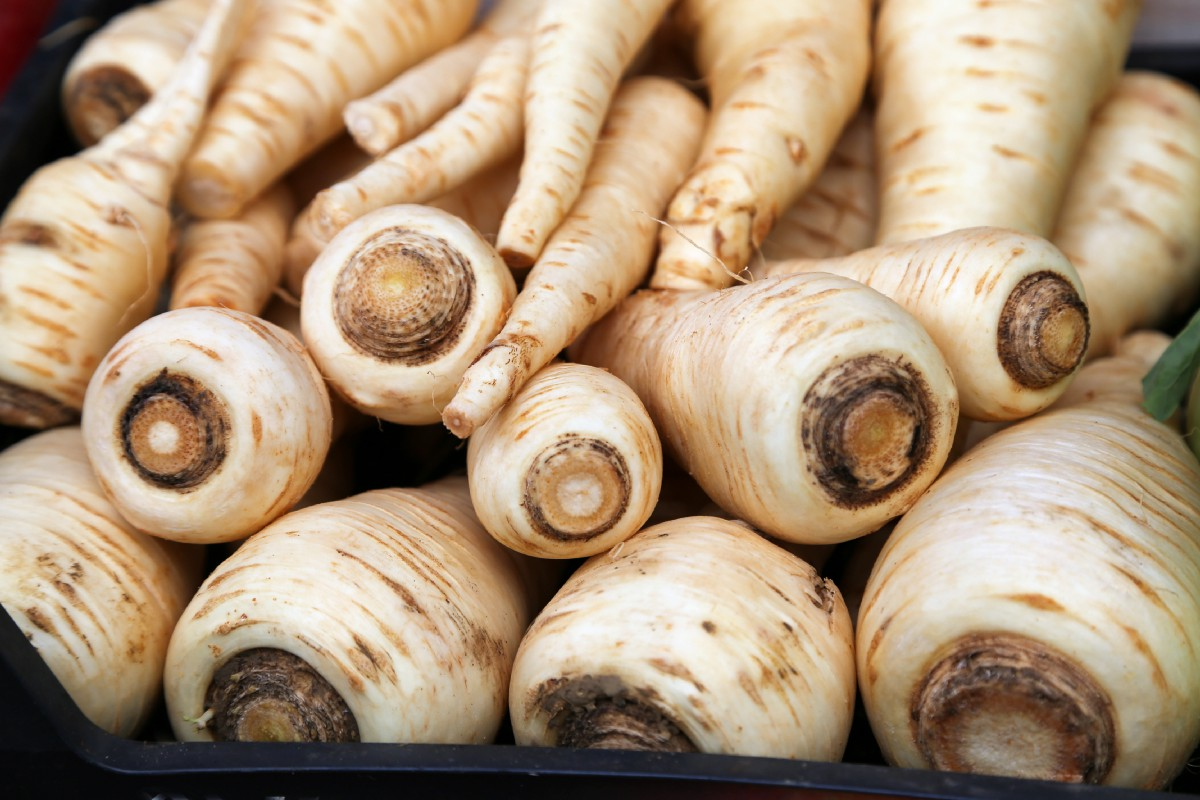 Can We Give a Round of Applause to Parsnips?