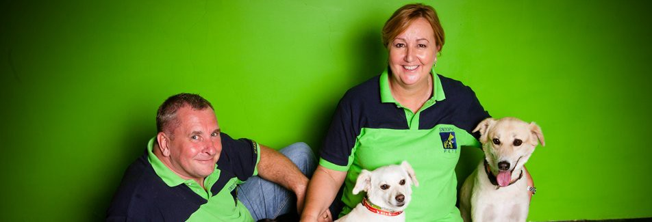 Pet Relocation and Shipping Services in Dubai — Snoopy Pets