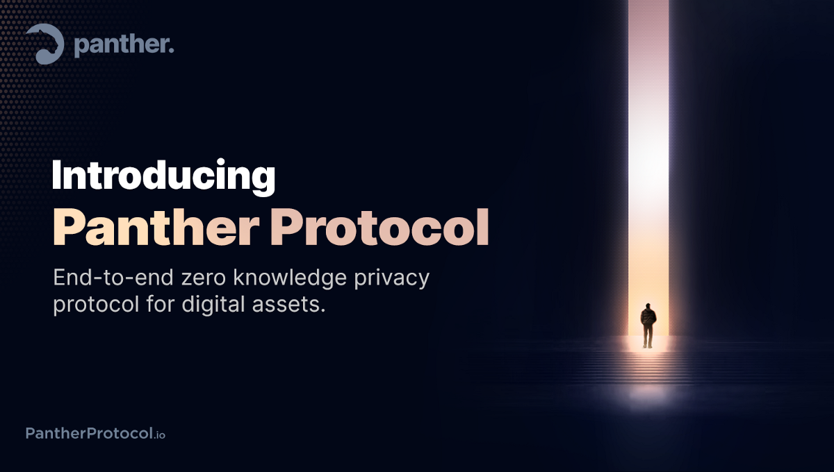 What is Panther Protocol and why it exists?