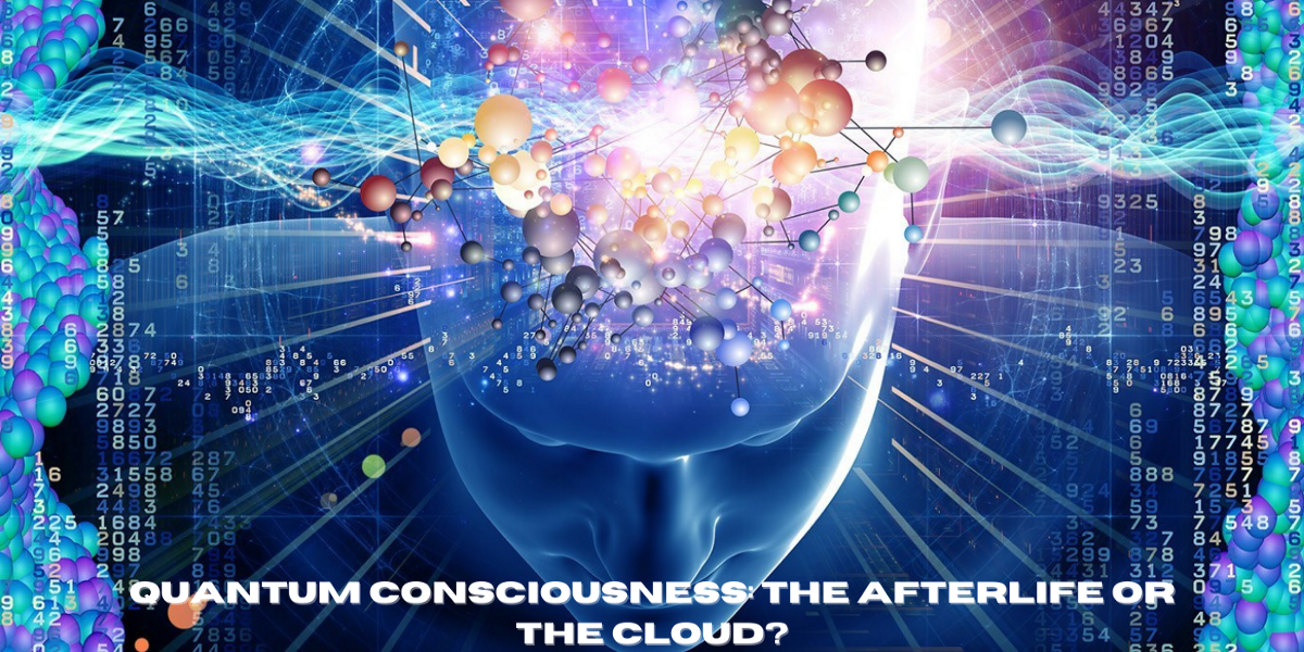 Quantum Consciousness The Afterlife Or The Cloud By Author Anthony Avina Phenomenon The Paranormal Publication Medium