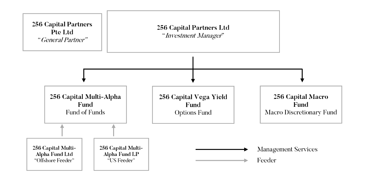 capital investment manager