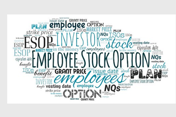 Employee Stock Options and Other Plans