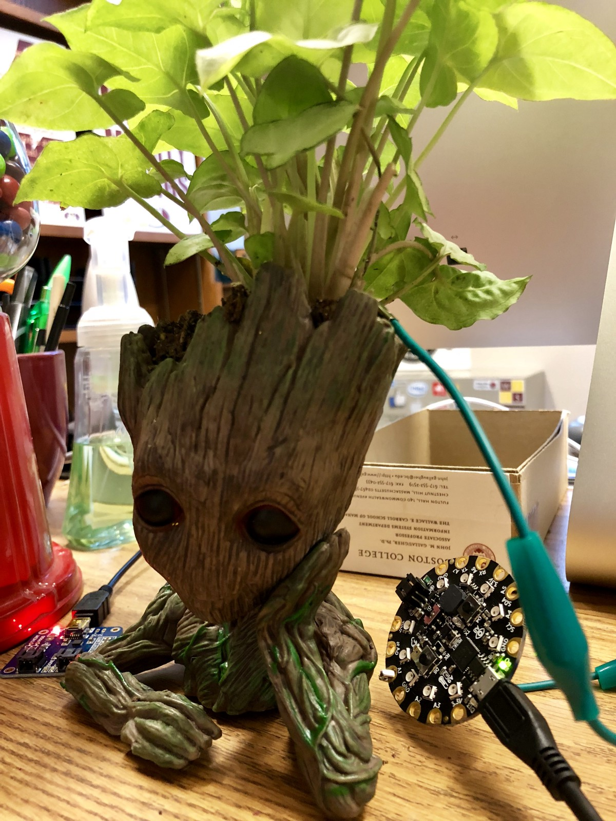 Build a Talking Baby Groot Using Circuit Playground Express