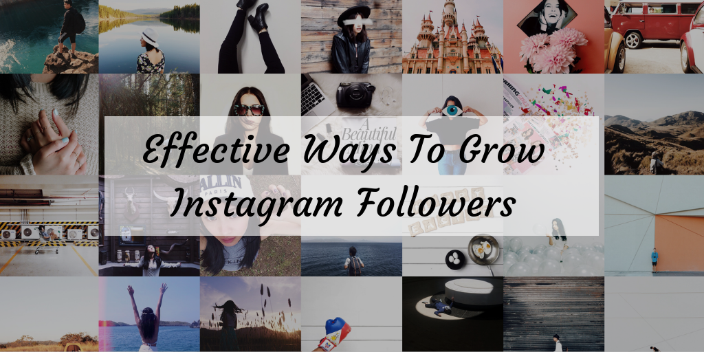 4 Effective Ways To Grow Your Followers On Instagram In 2019