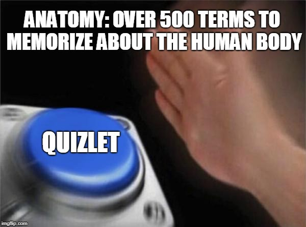 Quizlet — The Student's Master Tool at Succeeding