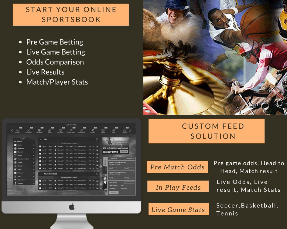 Designing your own sportsbook is now easy with the Betnesis