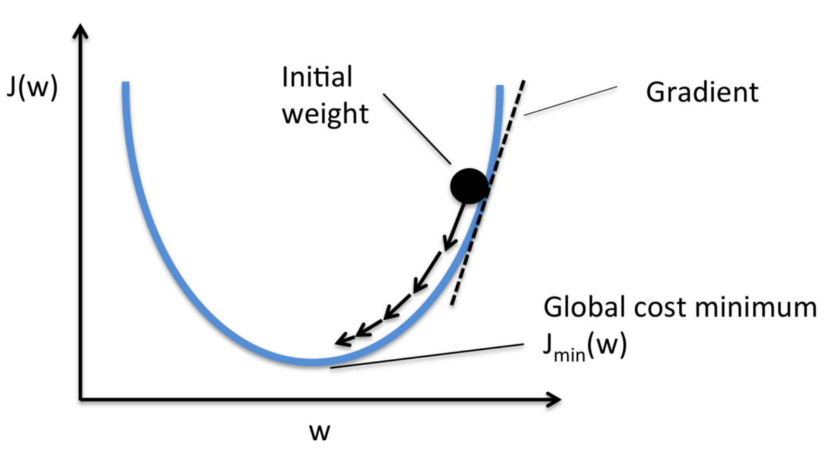 All about Gradient Descent in Machine Learning and Deep Learning!