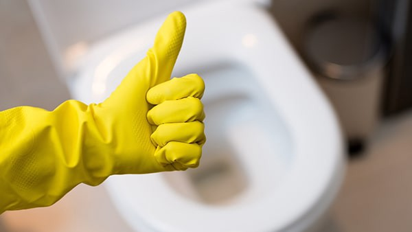 how to correctly clean the toilet