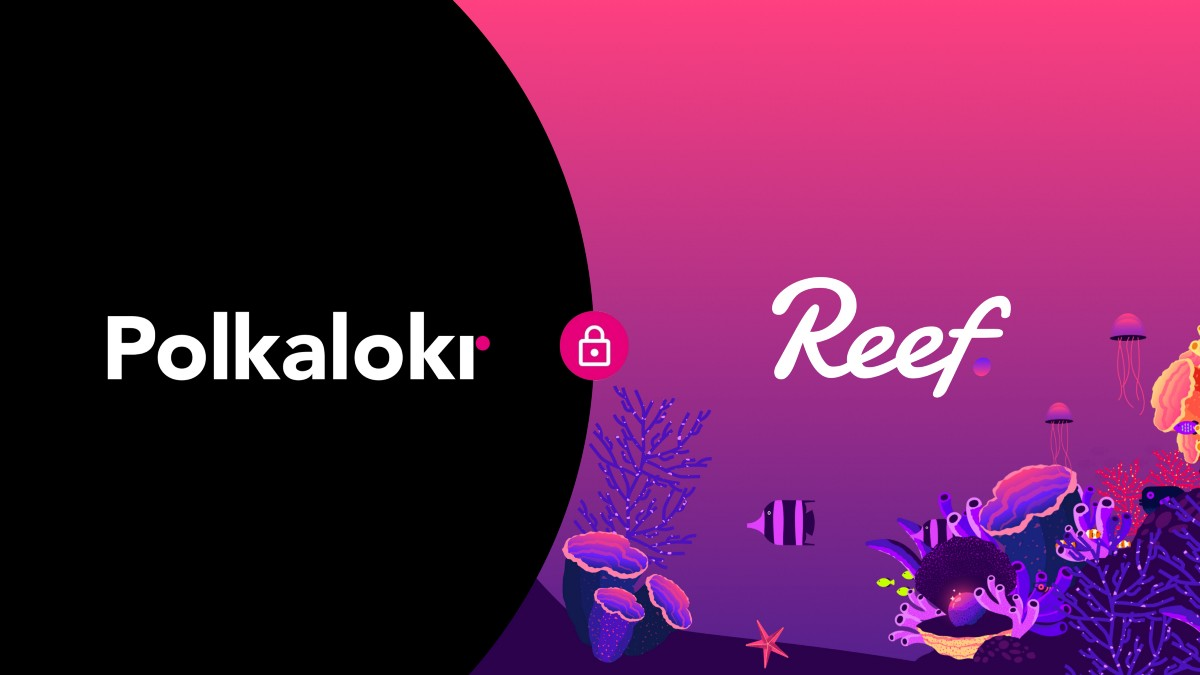 Polkalokr partners with Reef