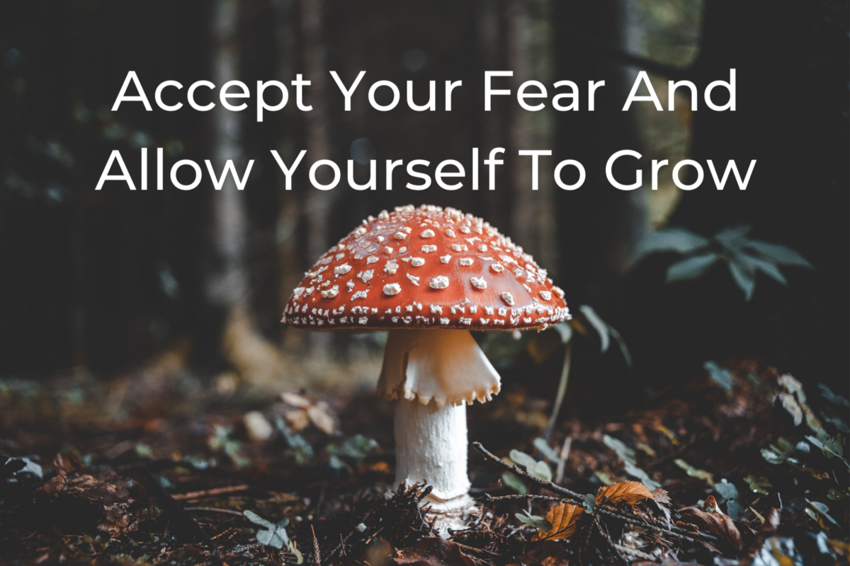 Accept Your Fear And Allow Yourself To Grow