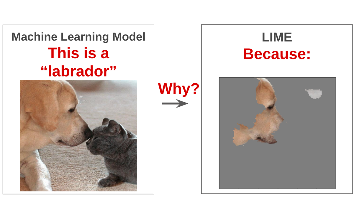 Interpretable Machine Learning for Image Classification with LIME