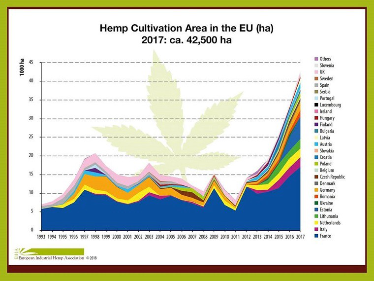 200% Increase In Irish Hemp Cultivation Since 2017 - Irish Hemp