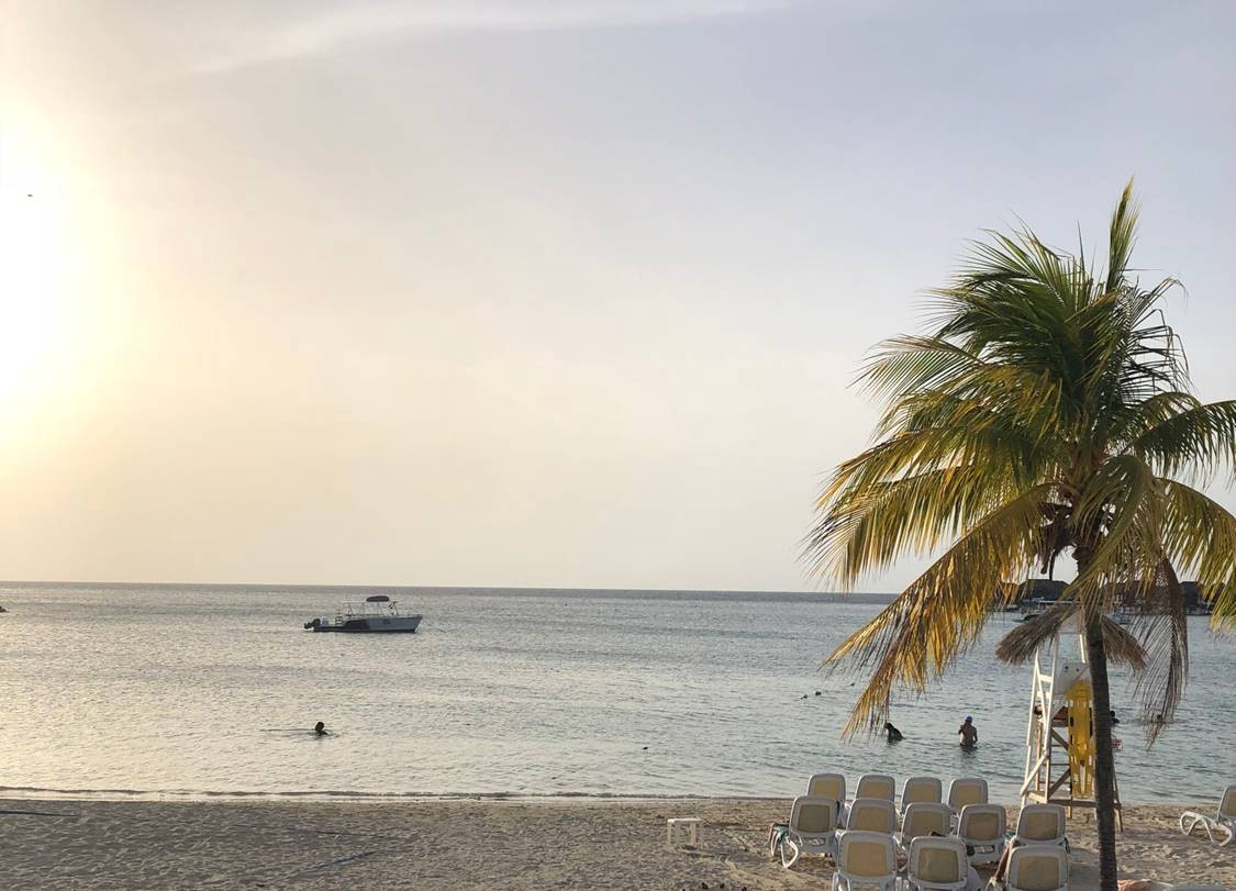 Montego bay classifieds  Montego Bay Houses For Rent in