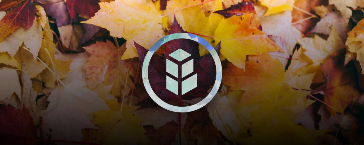 Bancor crypto review