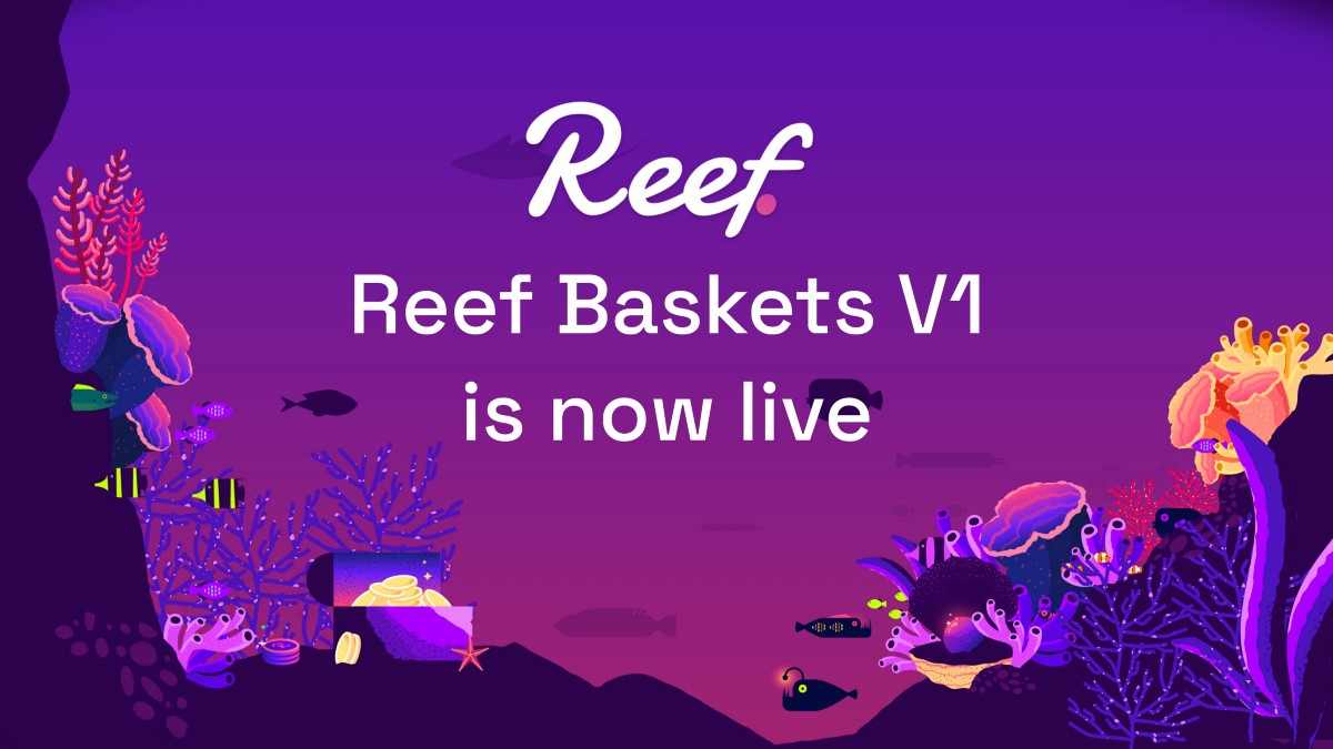 Introducing Reef Baskets to manage and optimize investments