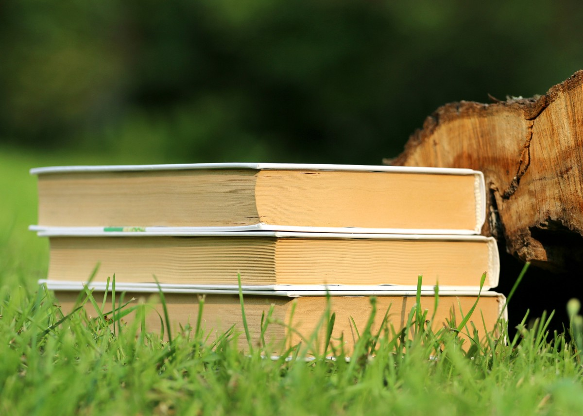 2 Literary Agents Actively Looking for Writers