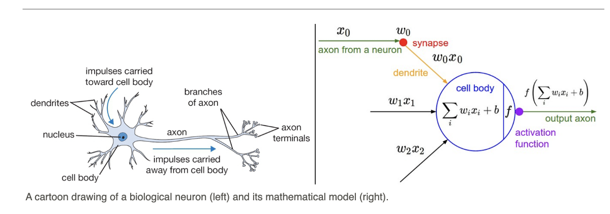 Activation functions in Neural Networks