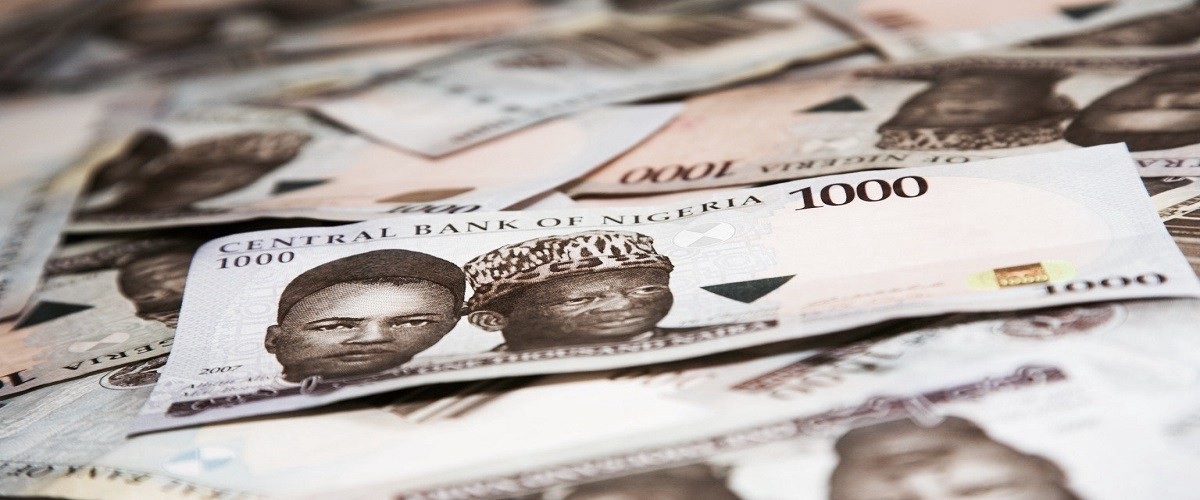 Naira has fallen: The Lambs remain Silent - The Policy